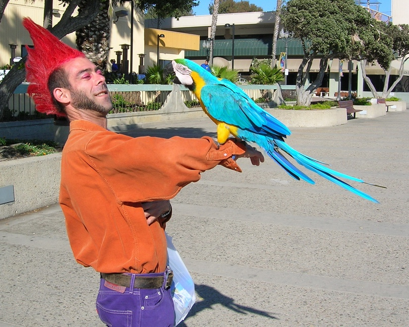 Me holding a Parrot